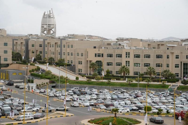 جامعة الملك